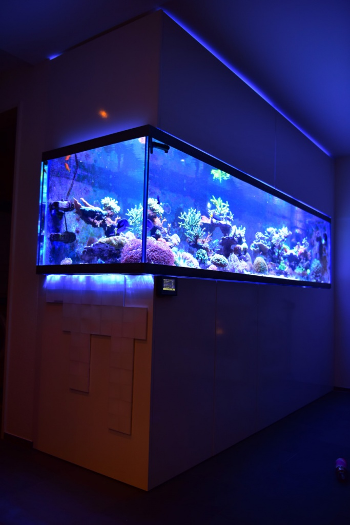 Angled Shot ProfiLux controlled Aquarium