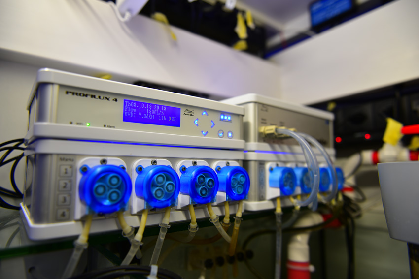 ProfiLux 4_ automated control_500 gallon tank
