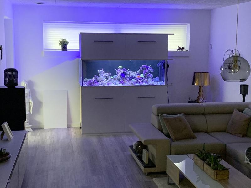 Aquarium TOTM_01_20, Ole Ovesen