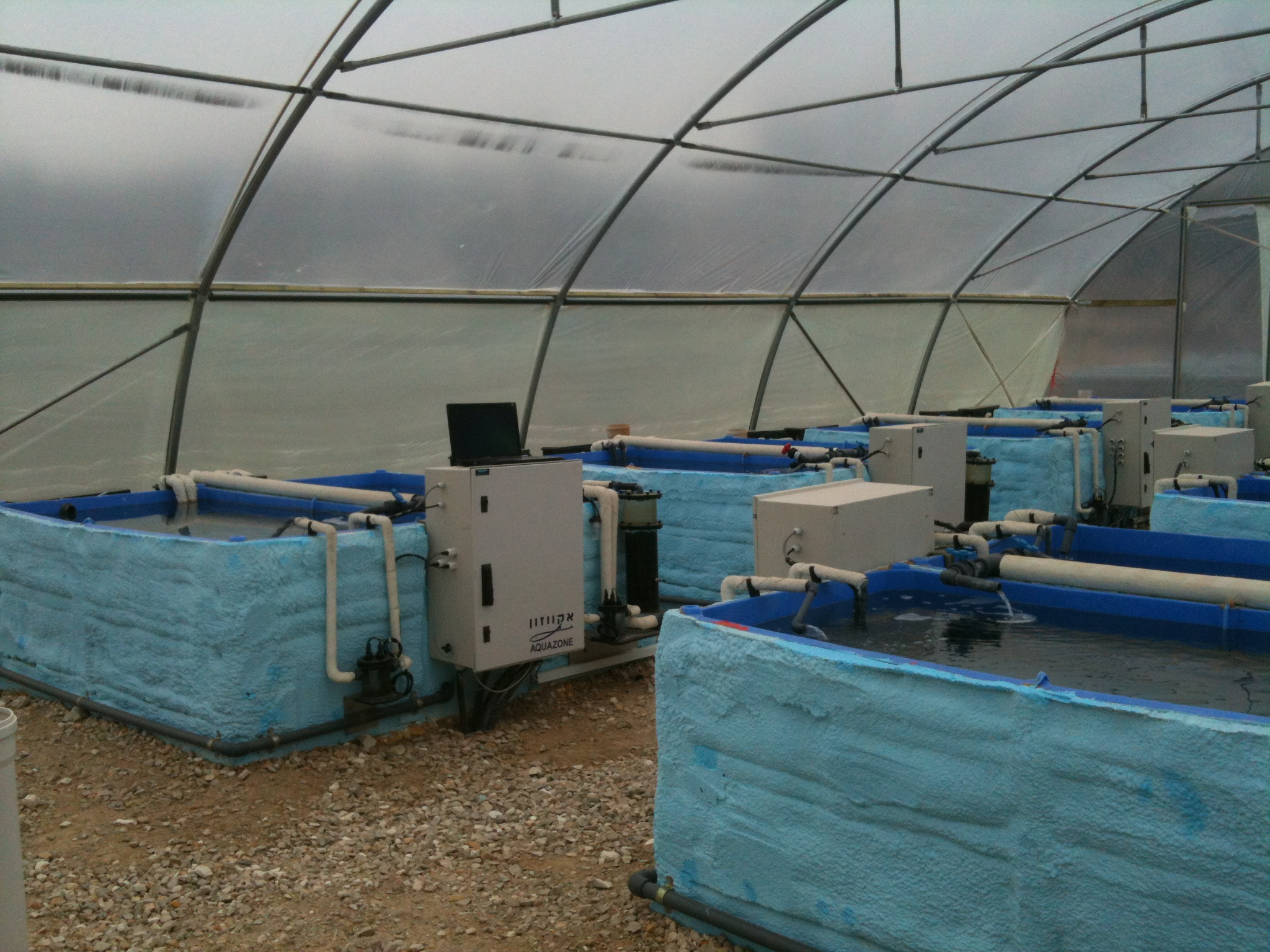Mesocosm In Israel Oceanographic And Limnological Research