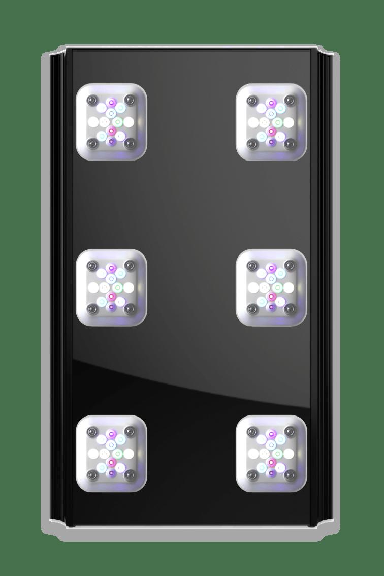 Mitras LX 7X06, black, bottom view