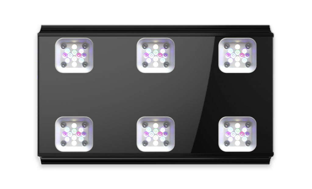 Mitras LX7, black,bottom view